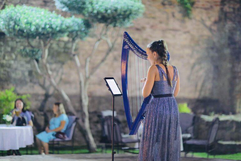 Harfa na rodjendanu